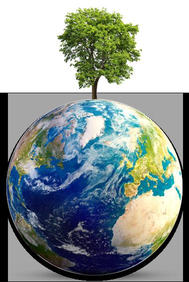 Tri-Logic La planette terre et son arbre