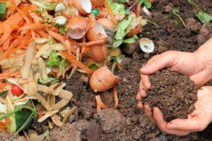 Biodéchet Déchet organique Compost Tri-Logic